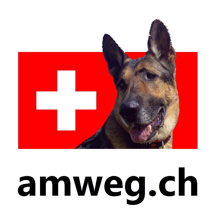 amweg.ch